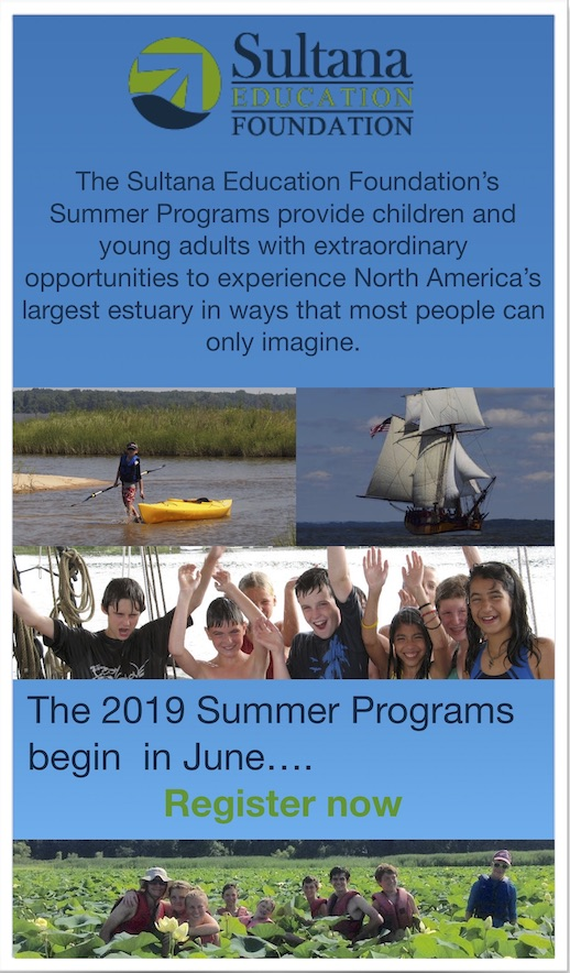 Sultana Education Foundation Summer Programs